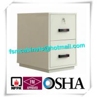 China Waterproof Fire Resistant File Cabinets , Fire Safe File Cabinet With 2 Drawer factory
