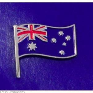 China Pakistan Singal lapel pins,metal pin,gifts metal arts factory