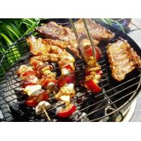 Buy cheap BARBECUE PAN from Wholesalers