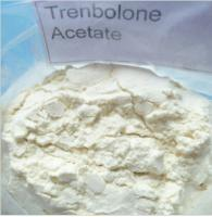 Buy cheap 99.5% Trenbolone Acetate Steroid Raw Powder CAS 10161-34-9 / Fat Cutting Steroids from Wholesalers