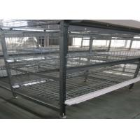 China Automatic Broiler Chicken Cage  System U - Shaped Steel Fram Long Lifespan factory