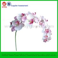 """Buy cheap 45"""" Silk Orchid Flower (14 FLWS) from Wholesalers"""