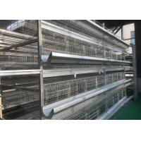 China High Density Automatic Poultry Feeder System Small Footprint Saving Land factory