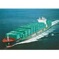 China Sea freight forwarding,Ocean freight forwarding,Shipping Forwarder from China factory
