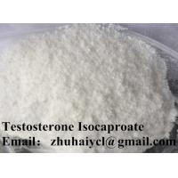 Testostero Testosterone Isocaproate Steroid For Sexual Dysfunction