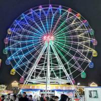 Buy cheap Large Scale Fairground Ferris Wheel / Theme Park Ferris Wheel Height 42m from wholesalers