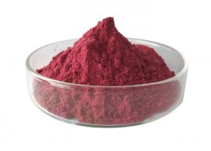 China Organic Natural 10/1 Mulberry Herbal Extract Powder factory