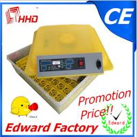 Buy cheap 48 eggs incubator fully automatic mini incubator for sale CE Approved from wholesalers