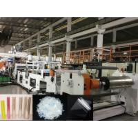 China PET Plastic Sheet Extrusion Machine For Producing PET Food Box Sheet on sale
