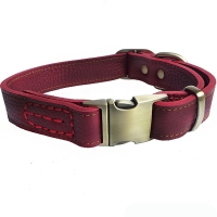China All Seasons Pet Collar Leash Nylon Material With Leather Buckle factory