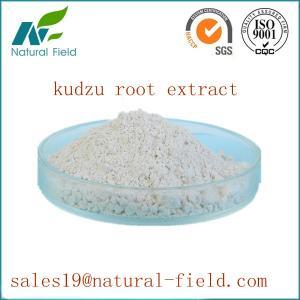 China pure natural puerarin factory