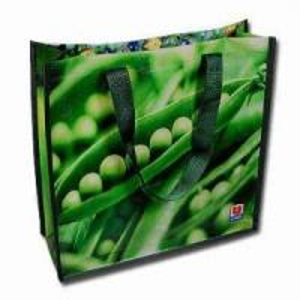 China Non-Woven Shopping Bag / Gift Bag / Promotion Bag (JFA-001) factory