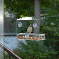 China Wholesale Large Window Bird Feeder - Free Detachable Tray Acrylic Plastic bird feeder with water drain holes factory