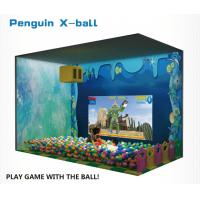 China Interative Projected Type Ball Games Family Amusement Center For Shopping Mall factory