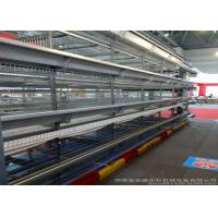 China Professional Poultry Egg Production Equipment For Layer Chicken Farm factory