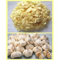 China GOOD QUALITY FOR DRY GARLIC FLAKES factory