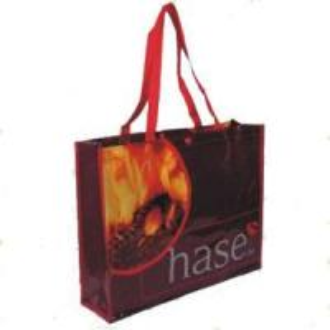China Non-Woven Gift Bag / Shopping Bag / PP Woven Bag (JFA-013) factory