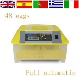 China Newest Hot sale automatic mini egg incubator factory