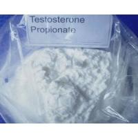 Safety Testosterone Cypionate Steroid , Male Build Muscle Steroids CAS 57 85 2
