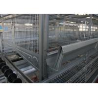 China Several Tiers Poultry Farm Feeding System High Elasticity Reduce  Deformation factory