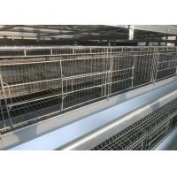 China High Efficiency  Chicken Farm Water System Easy Maintain 15-20 Years Lifespan factory