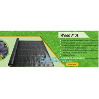 China pp weed mat organic agricultural plastic mulch, recyclable weed barrier,PP ground mat /concert crowd control barrier wee factory