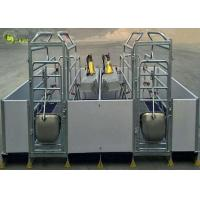 China Welding Pig Farrowing Crate , Turn Around Farrowing Crates PVC Fence factory