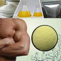 Buy cheap 99% Trenbolone Steroids Parabolan Powder With IR Detector CAS No 23454-33-3 from Wholesalers