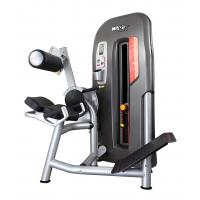 Buy cheap High End Back Exercise Machine , Men