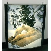 Buy cheap Durable Light Box Poster Printing Used In Subway Ultra Printing from Wholesalers