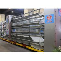 China Industry Automatic Chicken Cage / Layer Hen Cages Customized Size factory