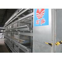 China Energy Saving Baby Chick Cage High Survival Rate Land Conservation factory