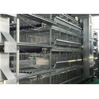 China Feed System Poultry Keeping Equipment  Easy Use Convenient Management factory