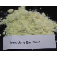 Buy cheap Muscle Gain Primobolan Trenbolone Steroid Methenolone Enanthate 303-42-4 from Wholesalers