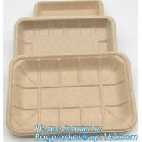 China Dishes & Plates Dinnerware Blister packaging Resturant Disposable Food Serving Tray food disposable container factory