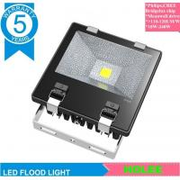 50W 6000K IP65 LED floodlight outdoor lighting CREE bridgelux LED with 5 years warranty