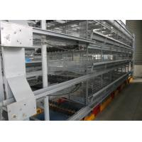 China Professional Layer Poultry Farming Equipment Easy Use Environment Friendly factory