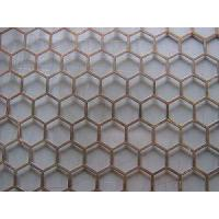 China Hexagonal-Hole Perforated Sheet (JH-L001) factory