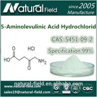 China CAS:5451-09-2 5-Aminolevulinic Acid HCL for anti-cancer / 5-ALA HCL 99% factory