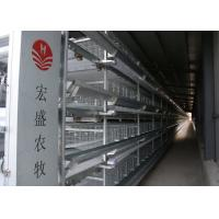 China Modern Egg Laying Chicken Cages , Chick Rearing Cage 128 Birds Capacity factory