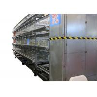 China Professional Poultry Cage Farming Sturdy  Chicken Cage For Laying Eggs factory