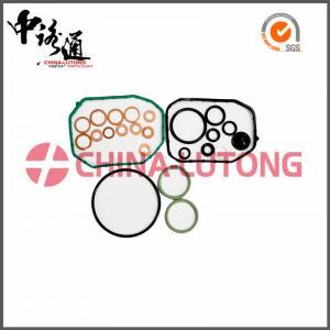 China 5.9 cummins diesel rebuild kit 800636 for SEAT/VW high quality diesel rebuild kit for sale factory