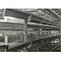 China Drying Automatic Manure Removal System Comfortable Environment For Chicken factory