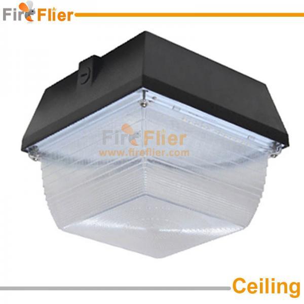 ceiling canopy light show.jpg