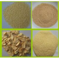 China DEHYDRATED GARLIC FLAKES 2.2MM factory