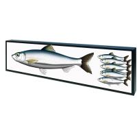 China Open Frame Shelf Edge Lcd Display Customized Color 50,000 Hours Panel Life factory