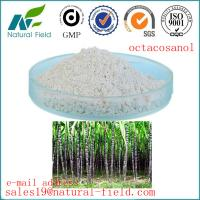 China GMP ISO octacosanol extract factory