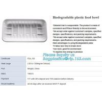 China blister packaging tray, rectangular plastic food tray, CornStarch PLA cement tray factory