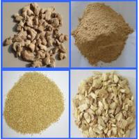 China DEHYDRATED GINGER GRANULES 16-40MESH factory