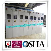 China Fire Resistance Gas Cylinder Storage Cabinet , Industrial Safety Cabinets For Cylinders factory